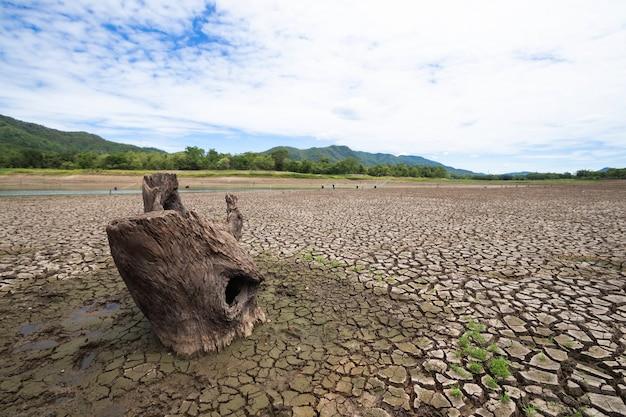 Ląd z suchą i popękaną ziemią