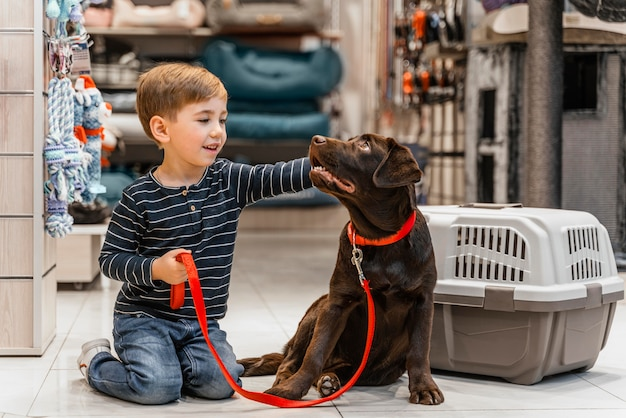 Ładny brązowy pies w sklepie zoologicznym