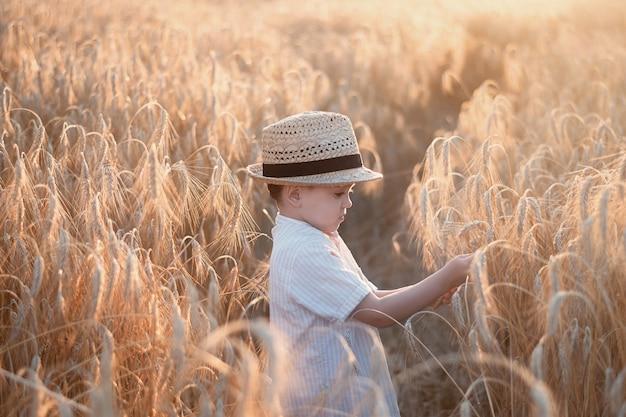 Ładny chłopak w słomkowym kapeluszu patrzy na kłosy żyta na polu