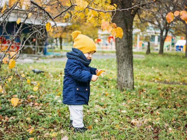 Ładny chłopczyk w modne ubranie odkrywa świat w parku przyrody jesienią