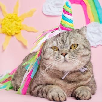 Ładny kot jednorożec z rogiem tęczy na różowym tle z promieni słonecznych