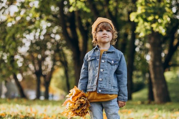 Ładny mały chłopiec bawi się liśćmi w jesiennym parku