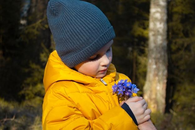 Ładny mały chłopiec posiada pierwsze wiosenne kwiaty