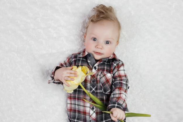 Ładny mały chłopiec w kraciastej koszuli posiada jeden żółty tulipan