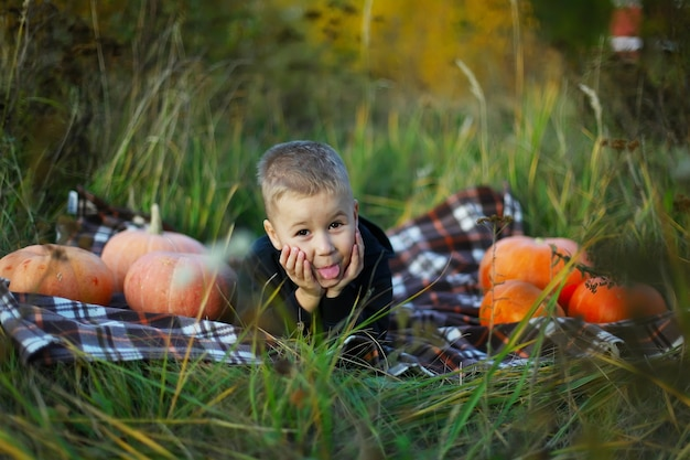 Ładny młody chłopak na koc w kratę z dużymi dyniami