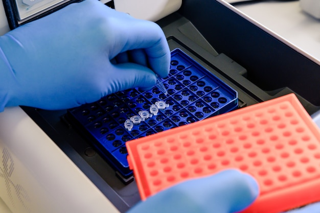 Ładowanie probówki dna do termocyklera pcr (łańcuchowej reakcji polimerazy) w laboratorium biologii.