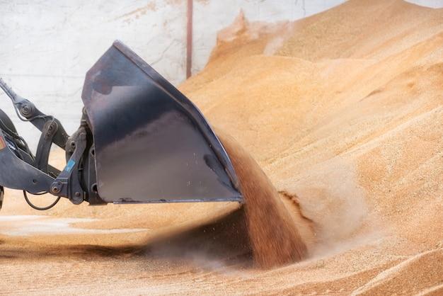 Ładowarka kołowa z bliska, koparka ładowanie piasku na budowie.