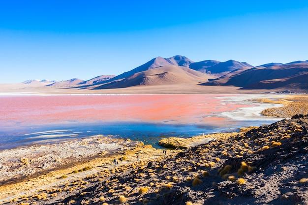 Laguna colorada jezioro