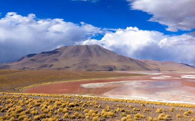 Laguna colorada w eduardo avaroa national reserve. potosi altiplano. boliwia. ameryka południowa.