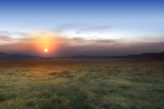 Łąka na tle zachodu słońca niebo