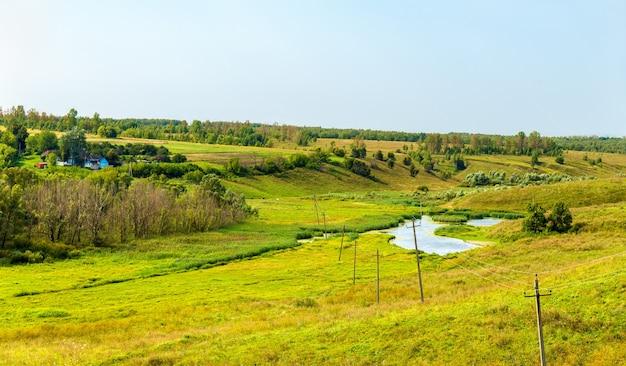 Łąka w bolshoe gorodkovo w rosji
