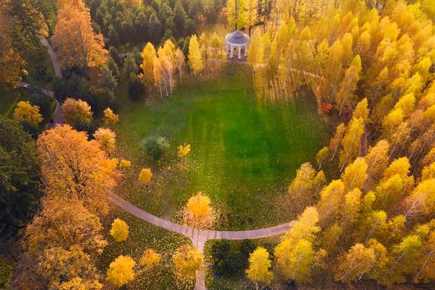 Łąkę otaczają żółto-zielone drzewa, jesienny krajobraz. widok drona.