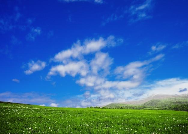 Łąki i niebo