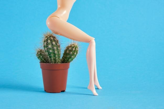 Lalka siedzi na kaktusie na niebieskim tle, koncepcja hemoroidów, problemy z przestrzenią kopii odbytu