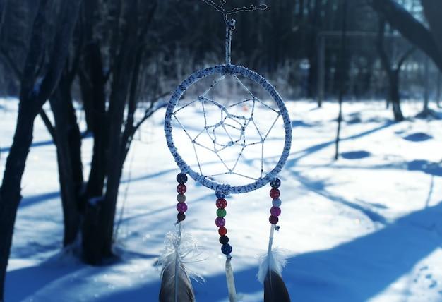 Łapacz snów wiszący na gałęzi drzewa w parku na tle przyrody zima.