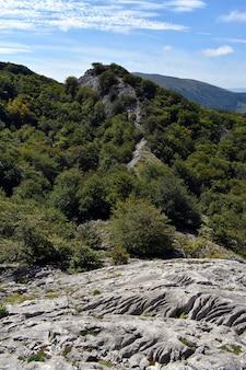 Lapiaz w masywie krasowym itxina. park przyrody gorbea. kraj basków. hiszpania