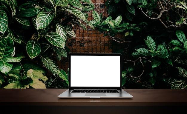 Laptop na białym tle na tle zielonych liści.