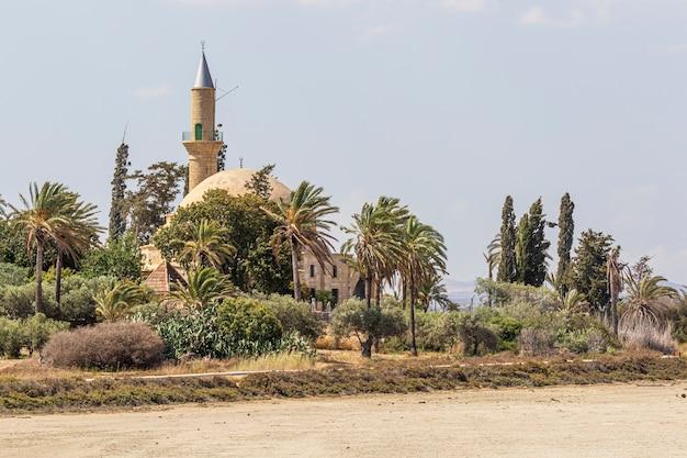 Larnaka hala sultan tekke i wyschnięte słone jezioro na cyprze