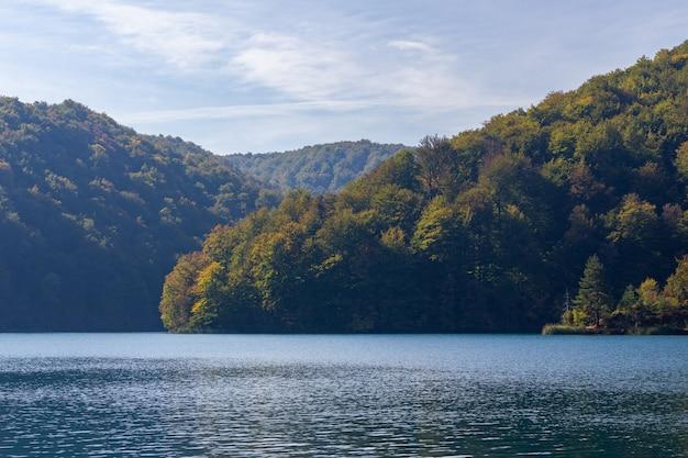 Las na wzgórzach w pobliżu jeziora plitwickiego w chorwacji