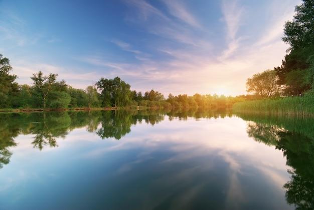 Las rzeczny i wiosenny.