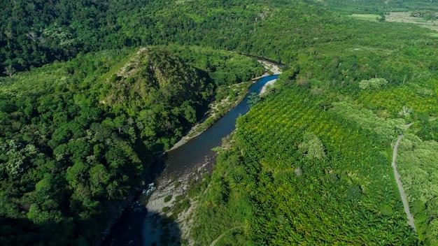 Las tropikalny w dystrykcie aceh besar prowincja aceh