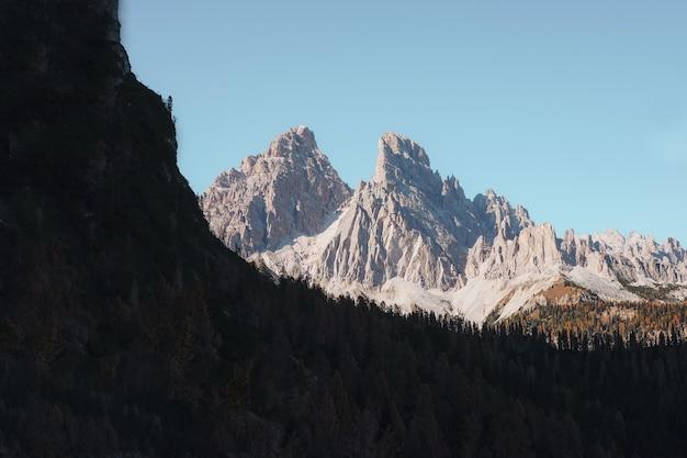 Las w pobliżu szarej kamiennej góry
