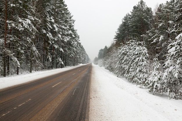 Las w śniegu zimą roku przez teren prowadzi mała asfaltowa droga dla samochodów