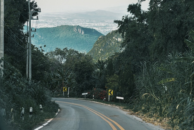 Lasy górskie, drogi z gęstymi lasami sosnowymi w górach w chiang rai w tajlandii, gdzie natura jest najbardziej.