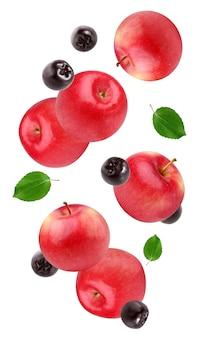 Latające czerwone jabłka i aronia czarna na białym tle. całe owoce i jagody z liśćmi w powietrzu.