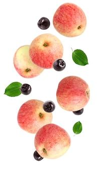 Latające jabłka i aronia czarna na białym tle. całe owoce i jagody z liśćmi w powietrzu.