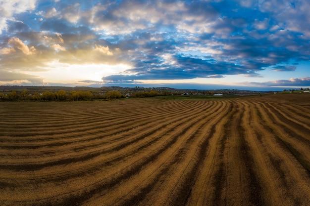 Latające nad polem uprawy pszenicy i lotnicze panoramiczne ujęcie drone