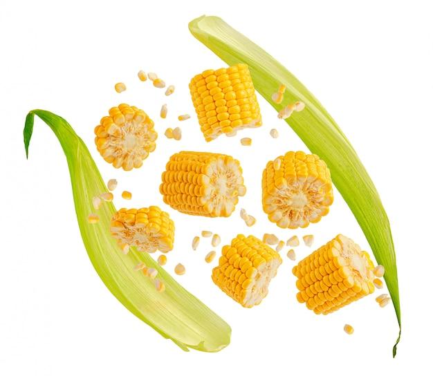 Latający kolby kukurydzy pęknięty z liśćmi na białym tle na białej przestrzeni. element projektu do etykiety produktu, druk katalogu.