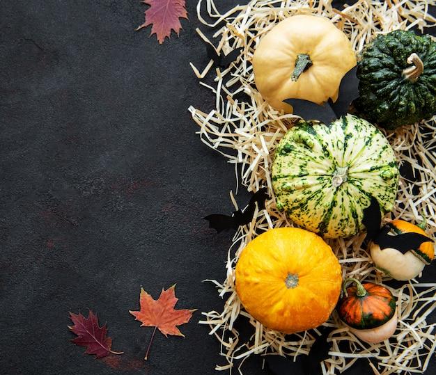 Latający nietoperze halloween i dynie na czarnym tle