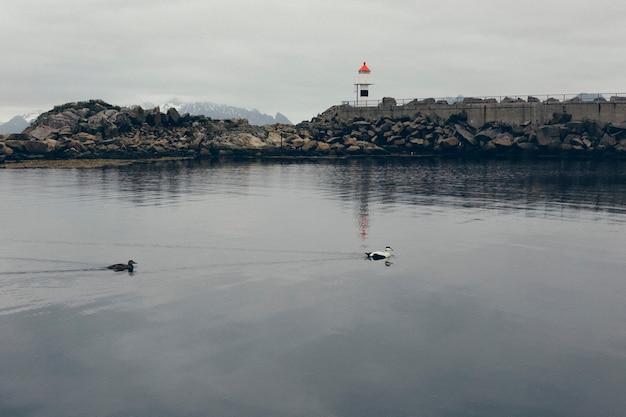 Latarnia morska w dzikich i odległych wodach atlantyku na morzu północnym, między skałami portu północnego.