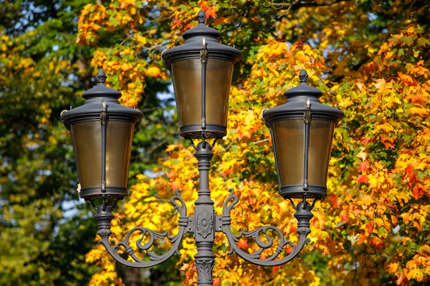 Latarnia uliczna na tle jesiennych liści.