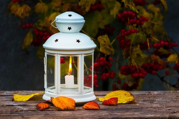 Latarnia ze świecą w jesiennym ogrodzie w pobliżu kaliny wieczorem jesienią