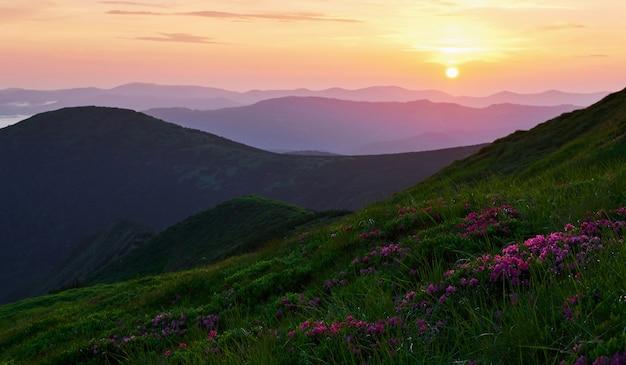 Latem. majestatyczne karpaty. piękny krajobraz. widok zapierający dech w piersiach.