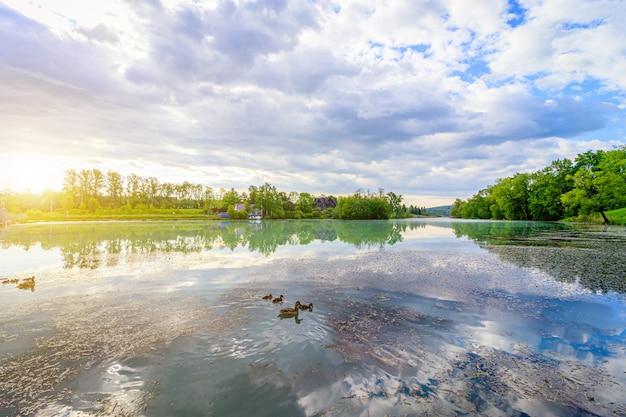 Lato krajobrazowy wschód słońca na jeziorze. poranne światło. odbicie w wodzie jeziora. jezioro lustrzane. podróż. rekreacja na świeżym powietrzu.