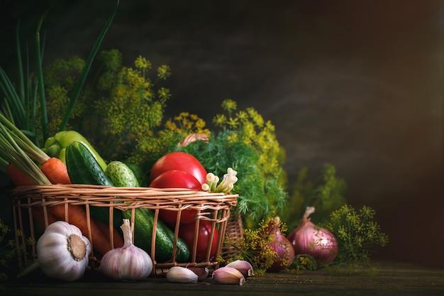Lato martwa natura dojrzałych warzyw i koperkiem.