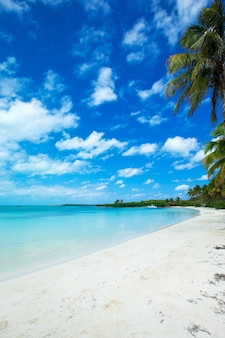 Lato na tle plaży. piasek, morze i niebo