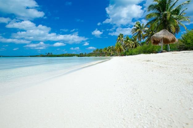Lato plaża tło. piasek, morze i niebo