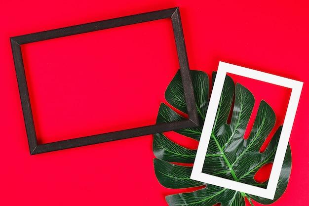 Lato pomysłów pojęcia tropikalnego liścia czerni ramy biała granica na czerwonym tle, odgórnego widoku kopii przestrzeń