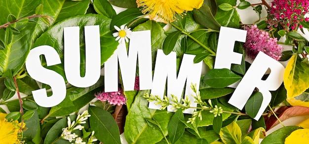 Lato świeże liście i kwiaty z tekstem cięcia papieru lato