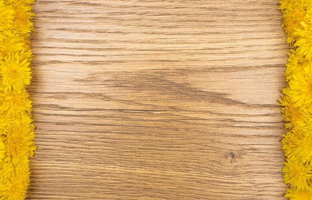 Lato tło z żółtymi mniszek lekarski. mlecze na starym drewnianym tle. mlecze na drewnie z miejscem na kopię
