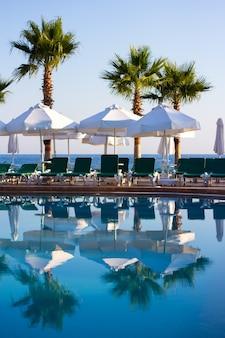 Lato w tle - basen i palmy na plaży