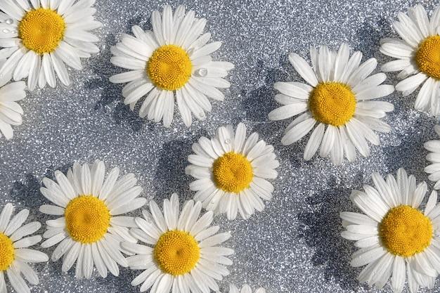 Lato w tle. naturalne kwiaty rumianku i woda fala na lśniące szare tło. widok z góry układ płaski.