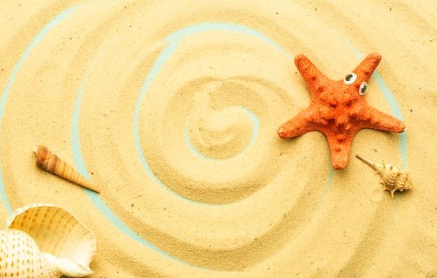 Lato, wakacje na plaży na tle morza. morskie i oceaniczne muszle na piasku plaży w słoneczne letnie dni. morze, ocean i relaks w backgarund.
