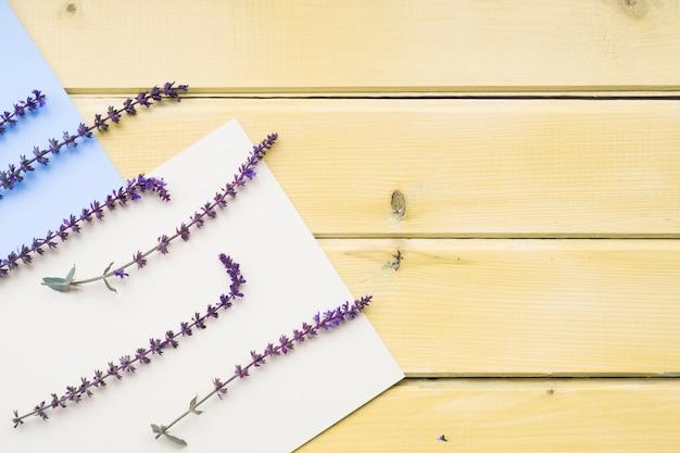 Lawendowi kwiaty na pustym białym i błękitnym papierze na drewnianym stole