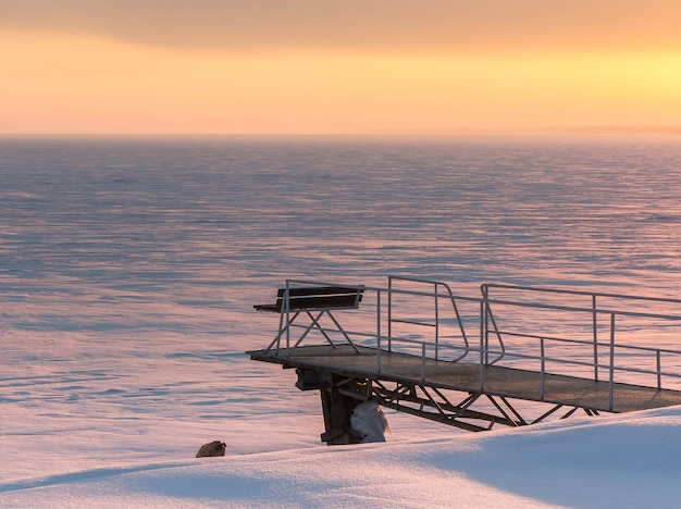 Ławka na molo przy zamarzniętym zbiorniku zimowy wieczór złote niebo o zachodzie słońca zaśnieżona równina
