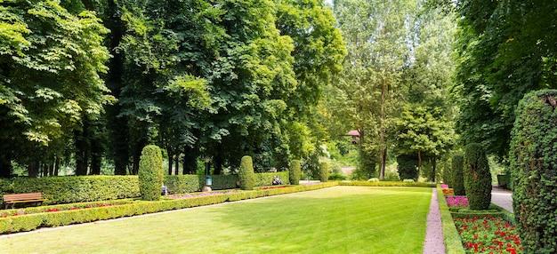 Ławki między krzewami w różnych kształtach, letni park w europie. profesjonalne ogrodnictwo, europejski zielony krajobraz, dekoracja roślin ogrodowych